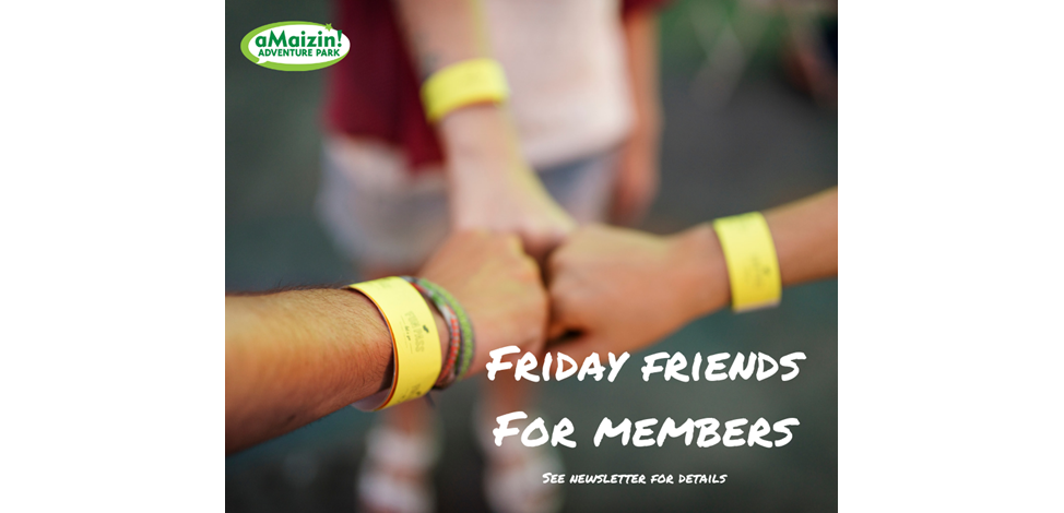 Friday Friends For Members Image